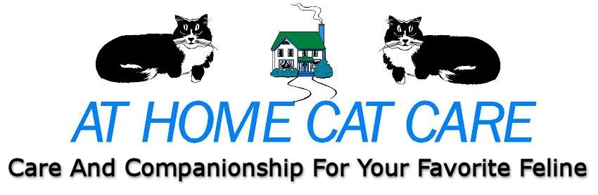 At Home Cat Care header